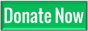 Donate Now button image